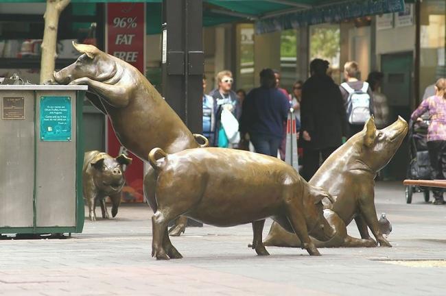 escultura cerdos adelaide austrália porcos