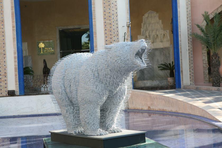 Selvagem Marrocos